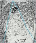 Pierrot (Egyszemű), 2005, számítógépes grafika, papír, 143x120 mm, (magántulajdon)